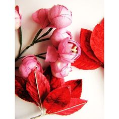 Pin de Christine Dovey en pink and red | Pinterest ❤ liked on Polyvore featuring backgrounds