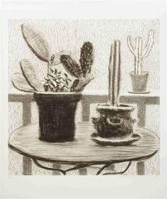 David Hockney CACTUS ON A TERRACE