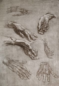 Desenho e Pinturas da Academia de São Petersburgo, hand study drawings Arte Com Grey's Anatomy, Anatomy Art, Human Anatomy Drawing, Human Body Anatomy, Figure Drawing Reference, Anatomy Reference, Drawing Practice, Life Drawing, Drawing Hands
