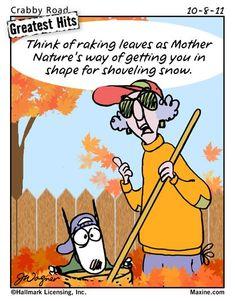 4b1af3e9404f89ffe54191b919597e0c fall humor timeline photos maxine shoveling snow funny pinterest shoveling snow and,Raking Leaves Meme