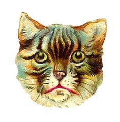 Antique Images: Free Cat Clip Art: Antique Tabby Cat Head Victorian Scrap