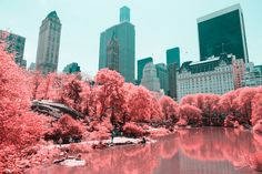 INFRARED NYC on Behance