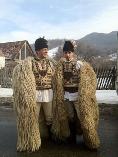 Romanian shepherds