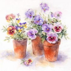 A Trio of Pansies - Rose Eddington