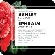 Pleasing Peony - Signature White Wedding Invitations - Bird and Banner - Black : Front