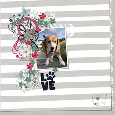 The most recent digital layouts added to our gallery!, DigiShopTalk - The Hub of the Digital Scrapbooking Community Digital Art, Elements, Creative, Digital Scrapbooking, Art, Art Template