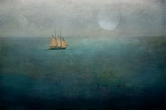 Second Star to the Right... | by jamie heiden