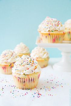 These homemade Funfetti Cupcakes are incredibly moist and fluffy and they're topped with the most incredible Vanilla Buttercream Frosting. These easy cupcakes are perfect for birthdays, holidays, or as a weekend treat! Cupcake Recipes, Cupcake Cakes, Dessert Recipes, Best Cupcake Recipe Ever, Funfetti Cupcake Recipe, 12 Cupcakes, Cheesecake Cupcakes, Coconut Cupcakes, Vanilla Cupcakes
