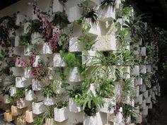 Jardim vertical na parede externa do Atelier