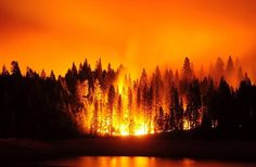 Fearsome wildfire near Rancho Cordova, CA.CO/NV area Fire Tornado, Fire Image, World Travel Guide, Wild Fire, Pine Forest, Life Is Strange, Sunset, Landscape, Nature