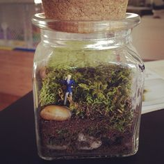 Make your own terrarium from Gretchen Rubin's #THP02