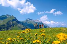 Switzerland. get natural. Hiking in the Engelberg valley, Central Switzerland.   Copyright by: Switzerland Tourism   By-Line: swiss-image.ch/Christian Perret