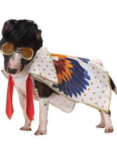 Rock n Roll Dog Pet Costumes - Elvis is in the house
