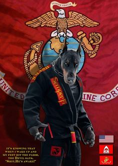 It's a cool pic 😎 Karate, Once A Marine, Art Of Fighting, Military Working Dogs, Usmc Quotes, Ju Jitsu, Martial Arts Workout, Japanese Tattoo Art, West Art