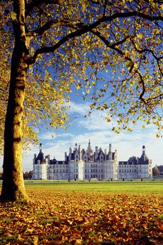Chateaux de Chambord, Loire Valley, France in the fall...  It's amazing , I don't know the place till I pin it today. it's the picture on one of my postcard , which I sent to a friend ? I used to like it so much !!!!
