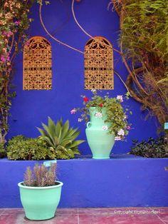 Bamboo Garden, Blue Garden, Colorful Garden, Dream Garden, Indoor Tree Plants, Trees To Plant, Pebble Dash, Mexican Patio, Moroccan Garden