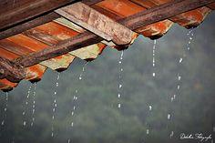 Aquela chuva que cai ao entardecer do dia na serra.