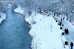 Winter / Rasht, Iran.