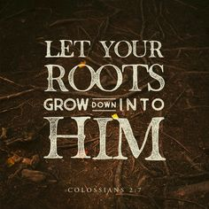 Colossians As ye have therefore received Christ Jesus the Lord, so walk ye in him: Rooted and built up in him, and stablished in the faith, as ye have been taught, abounding therein with thanksgiving. Bible Scriptures, Bible Quotes, Daily Scripture, Biblical Quotes, Spiritual Quotes, Godly Quotes, Scripture Cards, Morning Scripture, Scripture Journal