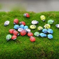 1000Pcs Colorful Mini Home Decor Kid Toys DIY Ladybird Ladybug potted decorative home decor photography props garden decoration