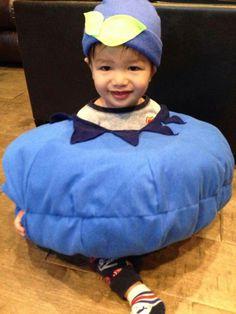Blueberry grand nephew