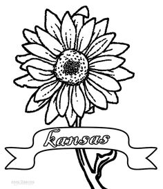 just add water coloring pages for kids | Printable Rose Coloring Pages For Kids | Cool2bKids ...
