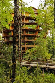 HOTEL HUILO HUILO CHILE NATURE FOREST GREEN