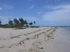 Photos de voyage à Playa del Carmen gay friendly. Tour du monde selon Gay Voyageur:   http://www.gayvoyageur.com