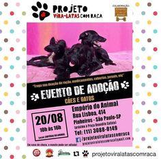 BONDE DA BARDOT: SP: Campanha de adoção de cães e gatos do Projeto Vira-Latas com Raça, em Pinheiros, neste sábado (20/08)