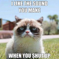 Think of this every time you look at Kimber or whatever its name is!! He doesn't like cats either!!