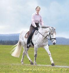 Dressage in nature: the 20 best terrain lessons – Door Ideas Horse Riding Clothes, True Love, Animals And Pets, Equestrian, Horses, Steel Doors, Door Ideas, Tricks, Trail