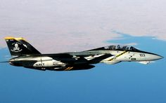F 14 Tomcat Jolly Rogers Military Aircraft.