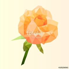 Vecteur : polygonal orange rose, poly low diamond flower, isolated vector