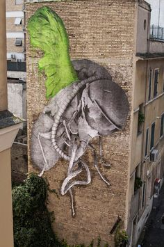 by Ludo in Rome, 2/15 (LP)