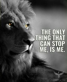 Lion Motivational Quotes 242 Best LION QUOTES images in 2019 | Thoughts, Inspirational  Lion Motivational Quotes