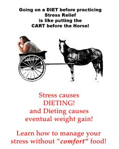 Stress is the reason that you probably gained weight in the first place! If you are happy in life and in your body, you don't use comfort food for stress relief.   Dieting puts a strain on your body and causes more physical stress and can damage your metabolism!  And 98% of diets fail within a few months to 2 years - and you regain more weight than you lost!  Learn how to manage stress with PROVEN effective methods that will prevent you from emotional eating - BEFORE you gain more weight!