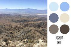 Joshua Tree color palette. Photo © Jane Kathryn Kolles