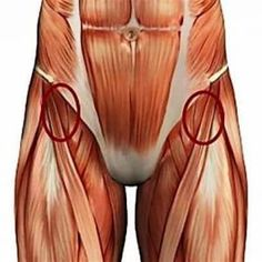 The 8 BEST Stretches To Loosen Tight Hips And Hamstrings (They Also Ease Low Bac. - Fitness and Exercises Hip Strengthening Exercises, Hip Flexor Exercises, Back Pain Exercises, Stretching Exercises, Best Stretches, Flexibility Stretches, Hamstring Stretches, Sciatica Exercises, Balance Exercises