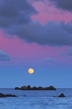 A full tangerine moon in purple skies!