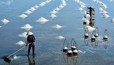 1 OF 10 REASONS TO VISIT IN KAMPOT - Kampot Salt Farms