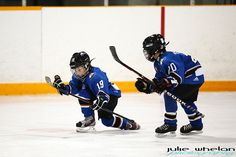 What you've been missing in the world of Tyke and Novice minor hockey: http://juliewhelanphotography.com/bothwell-minto-glencoe-image-week