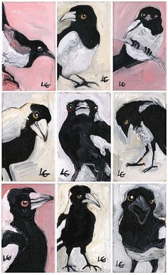 Items similar to Feral State Magpie Giclee Print on Etsy Magpie, Art For Sale, Giclee Print, Kids Rugs, Unique Jewelry, Handmade Gifts, Beer, Etsy, Vintage