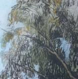 Stacy Frank Printmaker - etchings, lithographs, works on paper