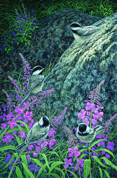 Chickadee Chat. Limited edition art print of an original painting by Shane Lamb. The prints are numbered and signed by Shane. Chickadees are acrobatic, territorial little birds. They are distinguished by their solid black cap and pale tan sides. They commonly nest in the holes of dead trees.