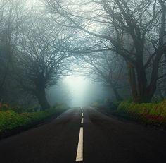 Guardians of endless road | Northern Ireland (by Lukasz Maksymiuk)