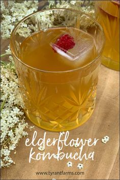 Great recipe (based off of the famous NOMA recipe) for making elderflower kombucha! #kombucha #elderflowers #probiotics #gardentotable #tyrantfarms Easy Drink Recipes, Clean Recipes, Snack Recipes, Milk Shakes, Cordial Recipe, Best Pickles, Foods For Healthy Skin, Kombucha Recipe, Probiotic Drinks