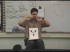 zoo phonics with sign language Zoo Phonics, Phonics Games, Sign Language, Speech And Language, Early Learning, Kids Learning, Stem Projects For Kids, Language Development, Preschool Kindergarten
