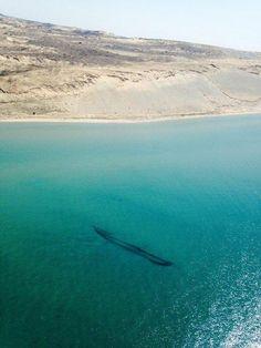 Photos: Lake Michigan's Shipwrecks From Above