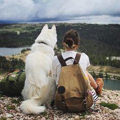 Urlaub mit Hund - der beste Freund immer dabei
