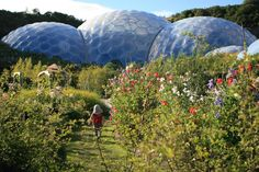 The Eden Project, Cornwall UK. By Tim Smit and Nicholas Grimshaw [1280x854] - Imgur